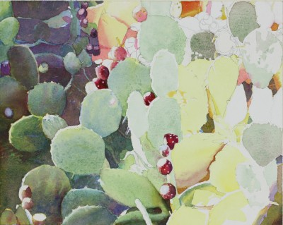 Prickly-Pear-Cactus-Blog-Judith-Glover