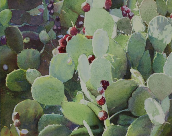 Prickly Pear Cactus © 2013 Judith G. Glover